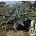 10 in. Small Olive Tree - Fontanini