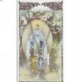 Miraculous Pendant and Prayer Card Set