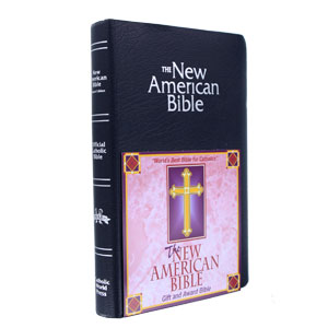 New American - Gift and Award Bible - Blue - Imprintable